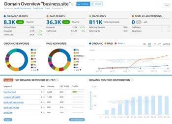 semrush-business-site-domain-overview.jpg